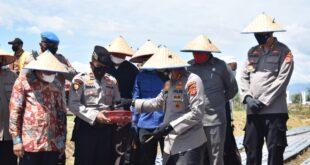 Kapolda Aceh Tanam Bawang Perdana Serta Memberikan Bantuan Sembako PPKM Mikro Kepada Masyarakat Yang Terdampak Covid-19